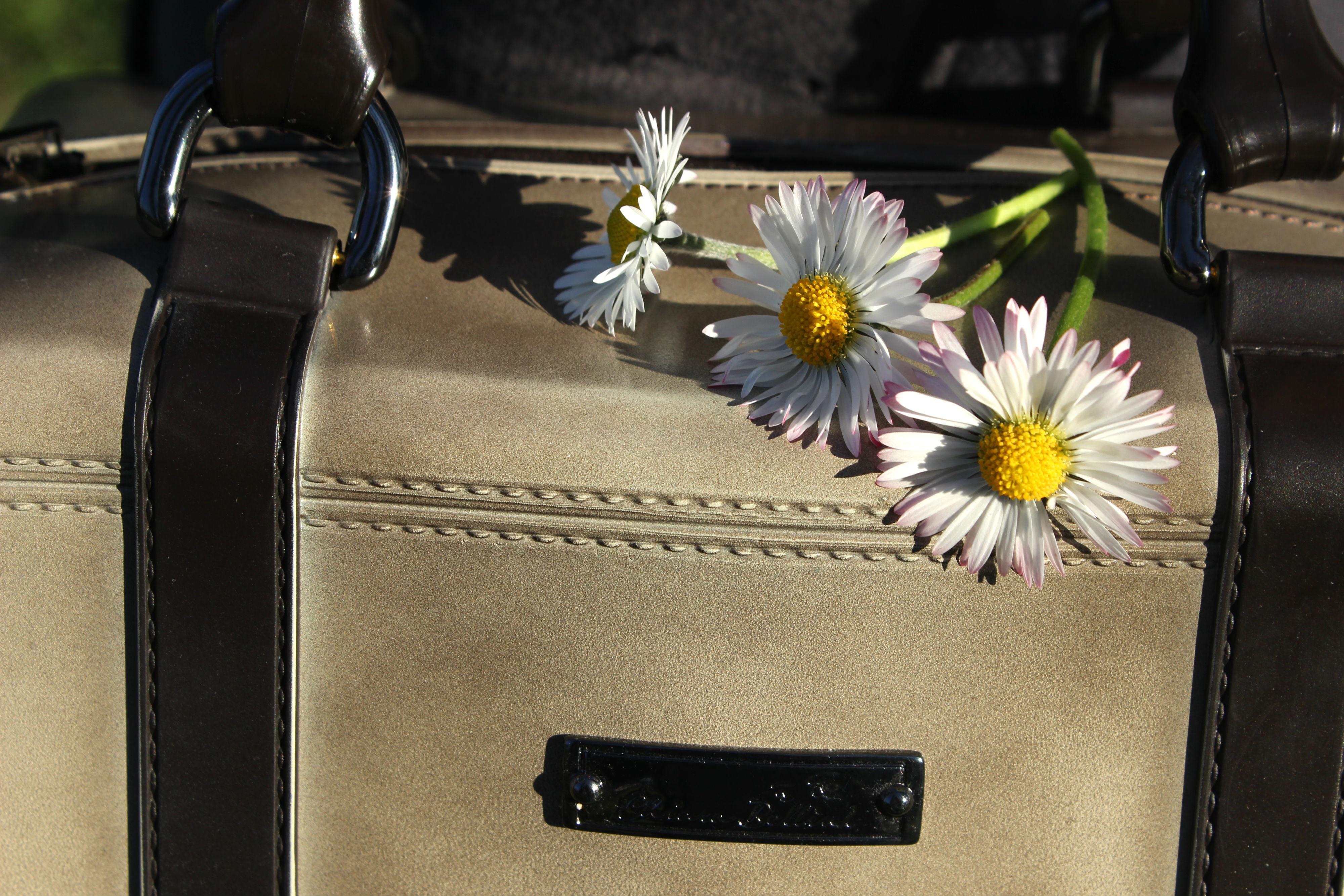 IMG_355CHIARA-BELLINI-boots-bag-pvc-elisabettabertolini-daylook-outfit-madeinitaly14