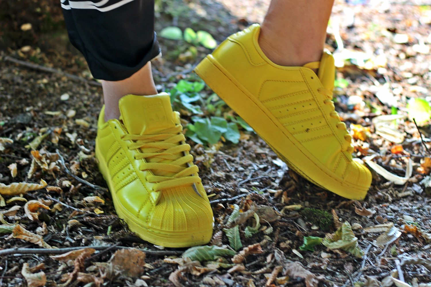 ADIDAS SUPER COLOR GIALLE