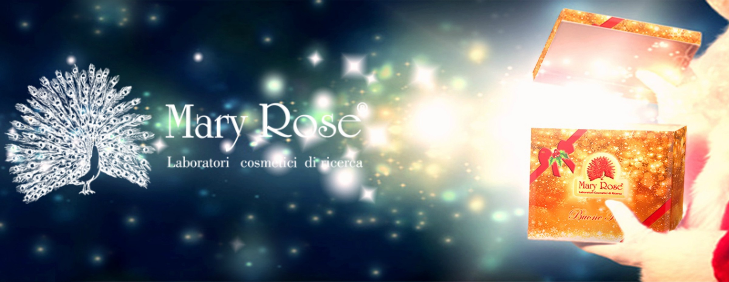 cover mary rose natale