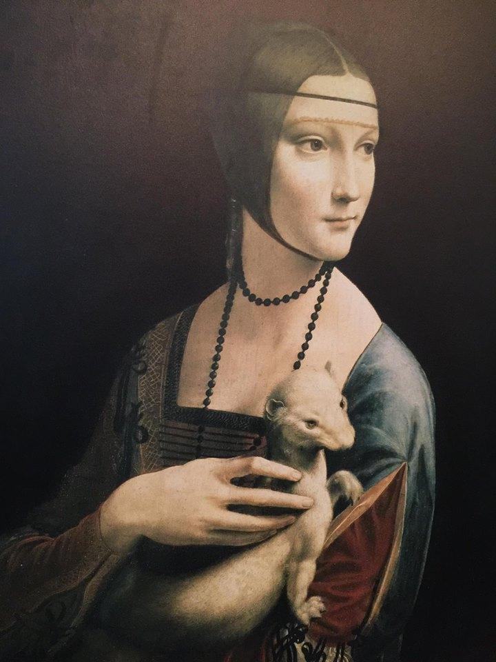 la dama con l'ermellino leonardo da vinci  museo castello di warwel