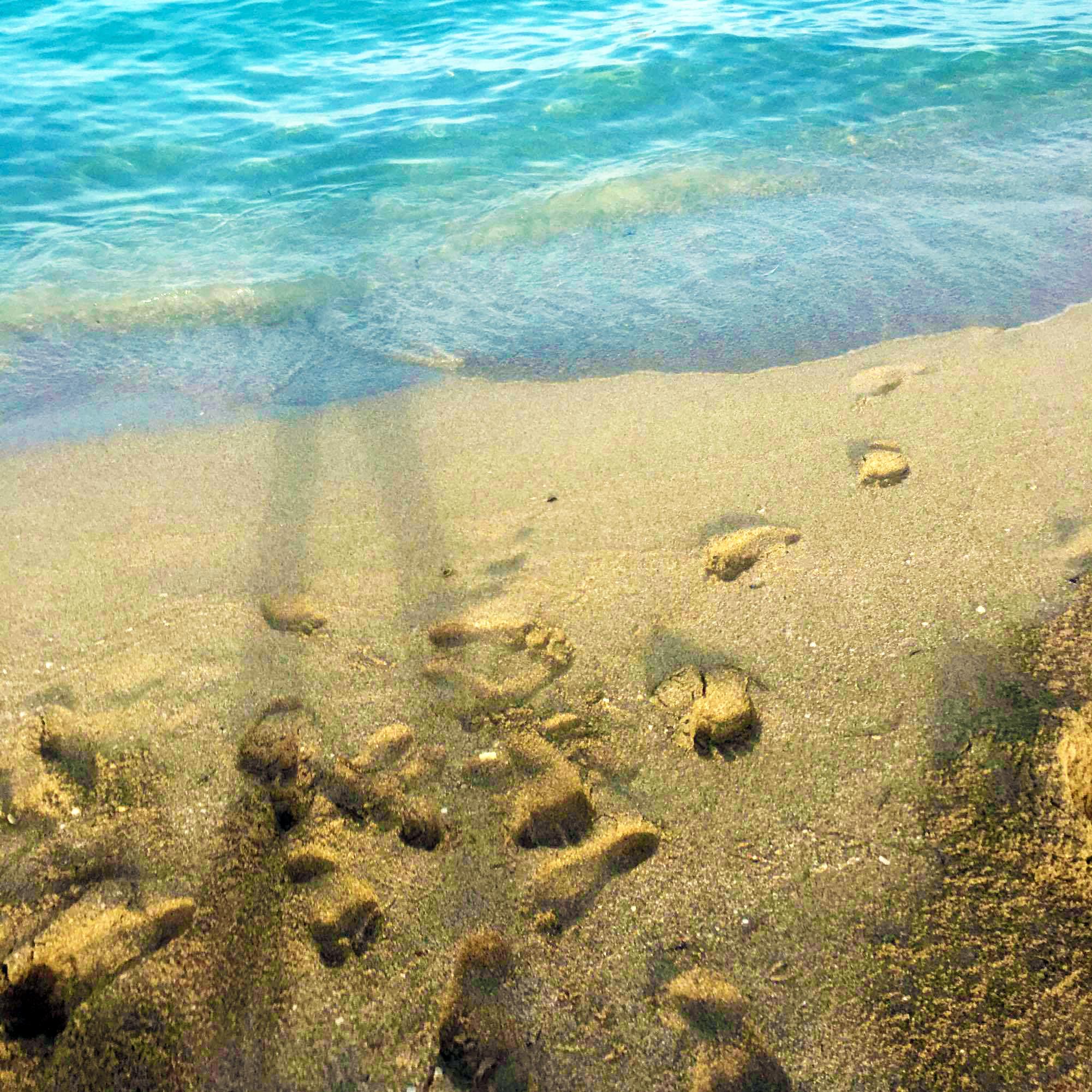 mare_miami_beach