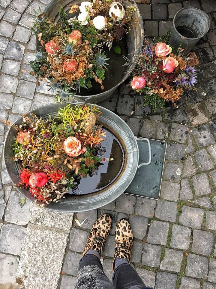 losanna fiori mercato 2