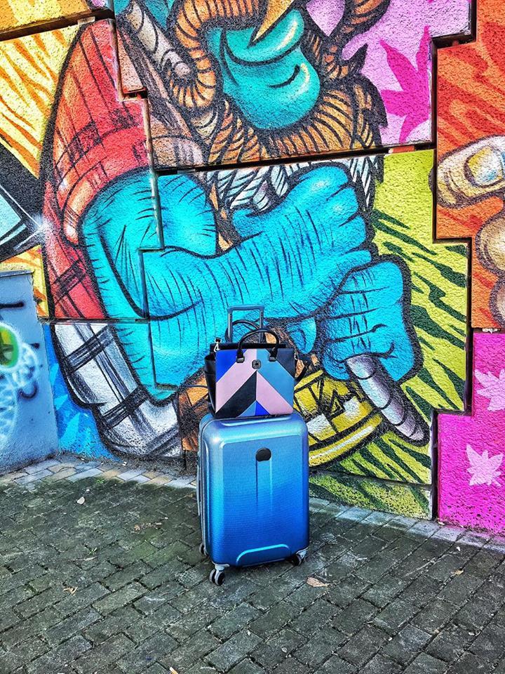 murales valigia trolley delsey