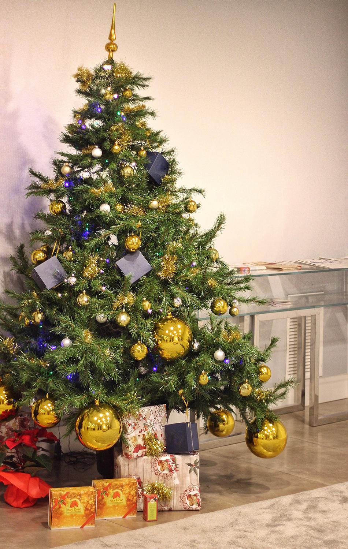 maryrose sotto l'albero di natale