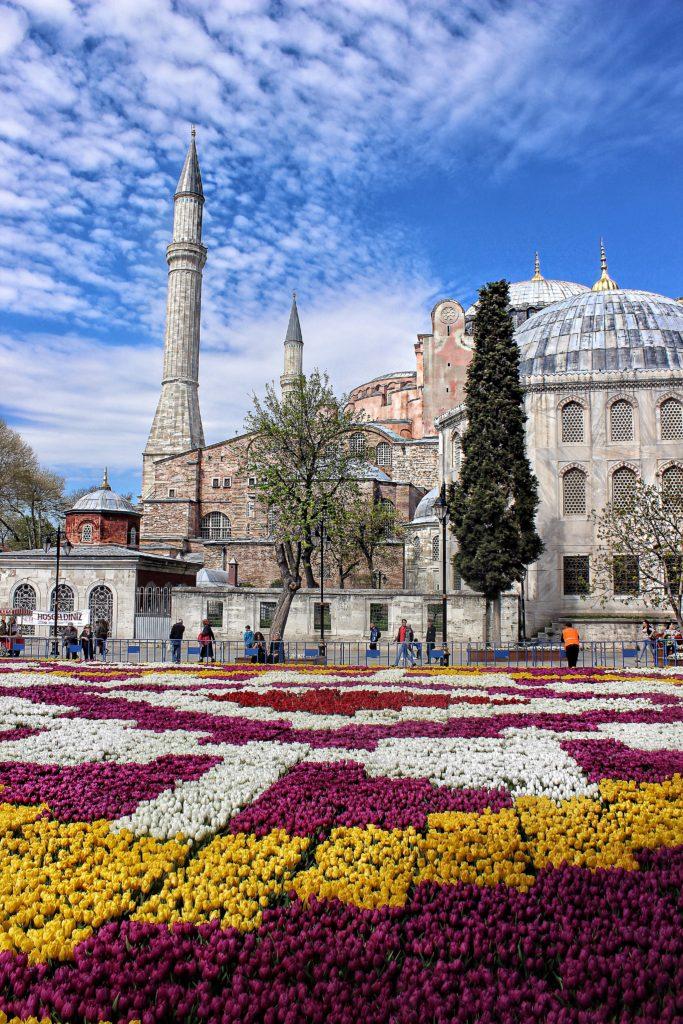 distesa di fiori santa sofia istanbul