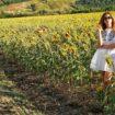 campo girasoli bertolini elisabetta influencer girls