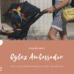 cybex-ambassador