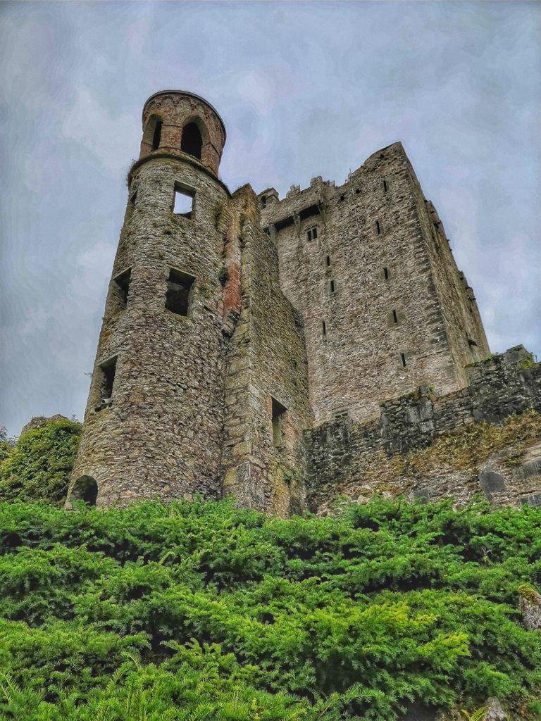 torre blarney
