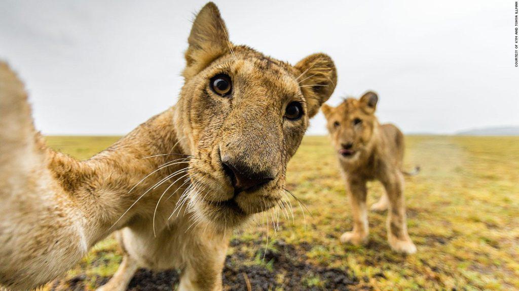 safari_destinazioni_viaggi