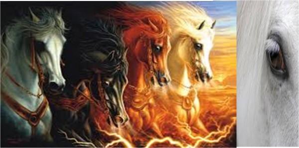 cavalli_apocalisse