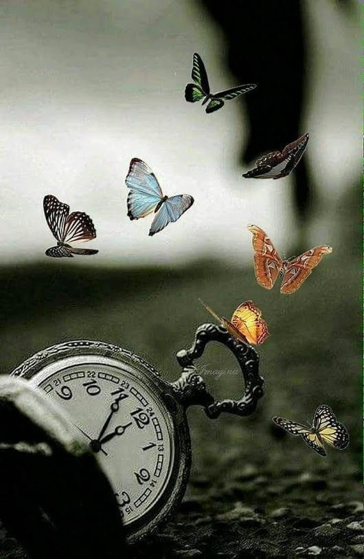 tempo_perdono
